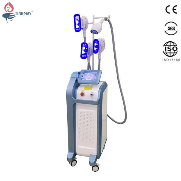 New arrival professional cryolipolysis fat freezing slimming machine with 4 cryo handles work simultaneously